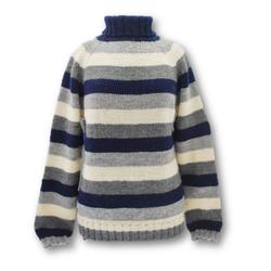 Gepard Striped Raglan Sweater